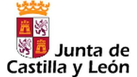 Los galardones del concurso 'Iniciativa Campus Emprendedor 2015' recaen en 14 estudiantes, egresados e investigadores de las universidades de Burgos, León, Salamanca y Valladolid