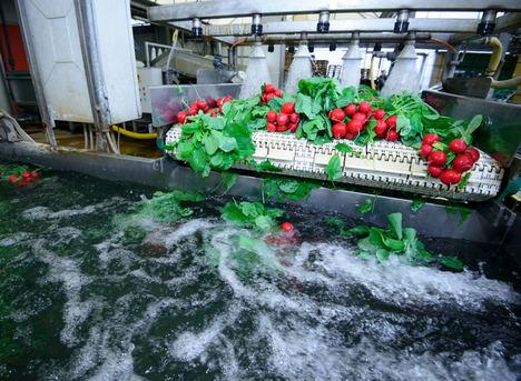 La industria de alimentos y bebidas se ve apremiada a adoptar buenas prácticas en el tratamiento de aguas