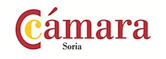 La Cámara ayuda a 102 empresas sorianas a digitalizarse a través de 231 proyectos con una inversión de 712.937 euros, de los que el 71% se queda en Soria