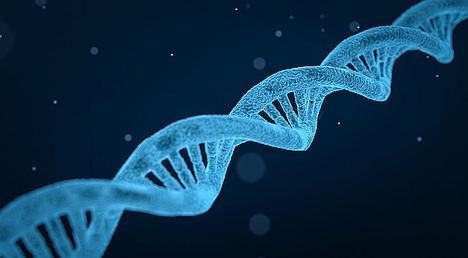 Nuevas alternativas terapéuticas para evitar en el futuro la transmisión de enfermedades mitocondriales