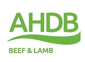 AHDB analiza las perspectivas del sector cárnico británico tras el Brexit