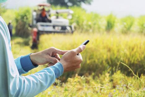 El consumo de internet crece un 40% en las zonas rurales, según Aotec