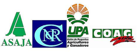 Las organizaciones agrarias llevarán al arbitraje a Azucarera, salvo que retome los acuerdos en vigor