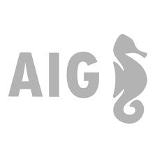 AIG, 25 años después, mantiene su modelo de negocio y fideliza a más de 100.000 empresas