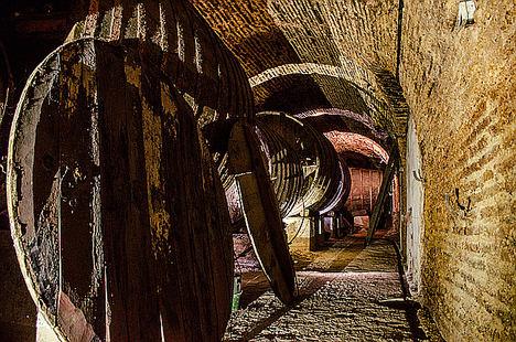 Visita Bodegas Subterraneas.