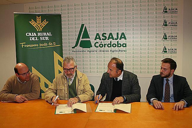 Acuerdo entre asaja c rdoba y mart nez echevarr a abogados for Reclamacion clausula suelo acuerdo previo