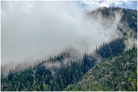 Los vehículos de renting flexible de Alquiber, claves en los trabajos de prevención y lucha contra los incendios forestales