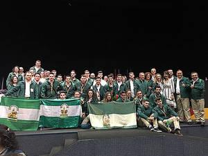 Andalucía consigue tres oros, cinco platas y un bronce en el Campeonato Nacional de FP 'Spainskills 2017'