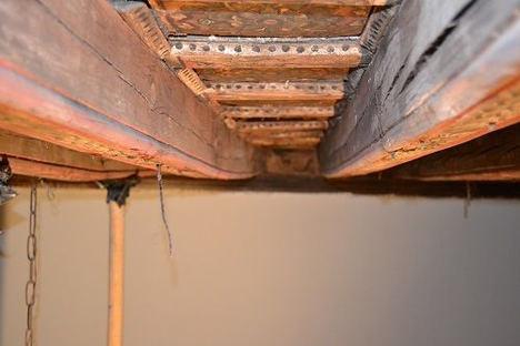 Rentokil Initial realiza la desinsectación de parte del artesonado de la Catedral de Badajoz