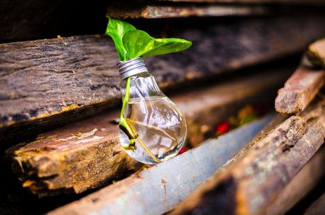 Atos adquirirá EcoAct, líder en consultoría de estrategia de descarbonización