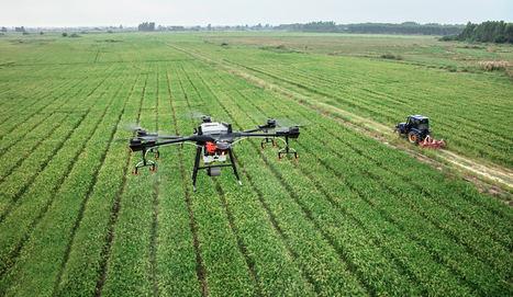 Atos y Telespazio ponen bajo control la plaga de la planta tóxica estramonio a través de drones y aviones teledirigidos