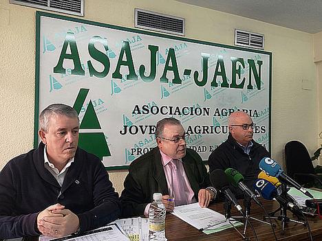 Balance del año agroganadero de Asaja Jaén