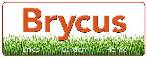 Brycus lanza su nueva página web en 5 idiomas