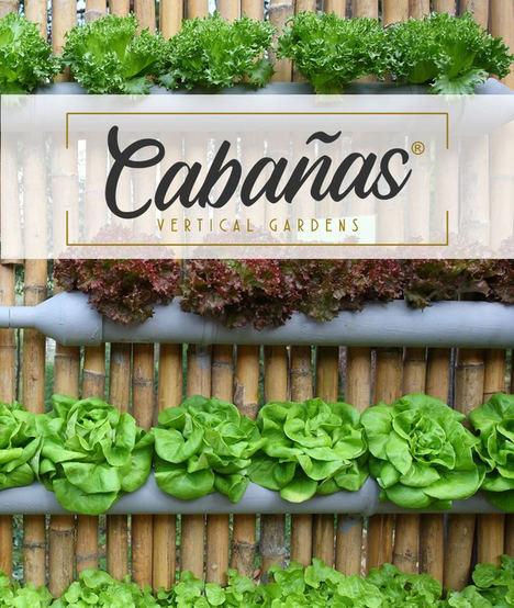 De la mano de CABAÑAS Vertical Gardens: El huerto vertical, ¿Un cultivo ideal?