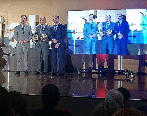 CEPES, galardonada con el Premio 'Inclusión Social 2019' de Amiab en categoría 'Entidad Colaboradora'