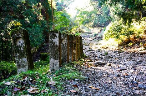 Camino al templo Enryaku-ji en el Monte Hiei.