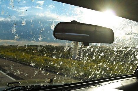 Diez trucos para los cristales del coche en verano según Carglass