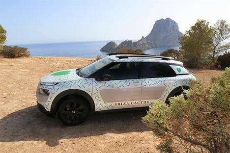 Embajador de la iniciativa Ibiza Cactus