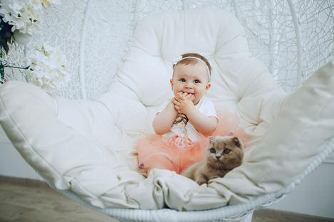 Cómo preparar a nuestra mascota para la llegada de un bebé