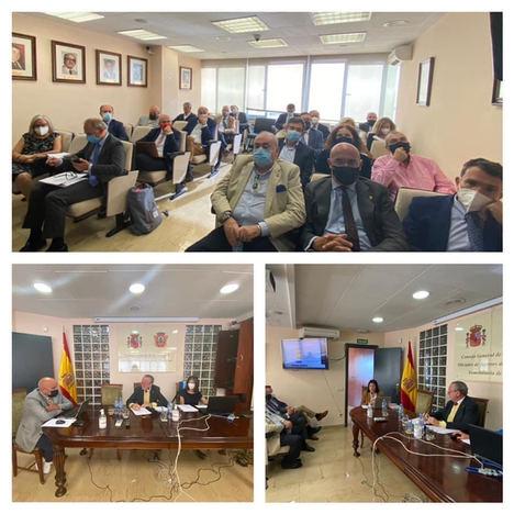 El Consejo General de los COAPIS de España trabaja en la creación de un ordenamiento para el sector inmobiliario