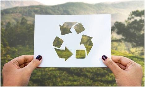 Consejos para reducir la contaminación ambiental en el negocio