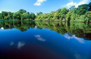 Costa Rica, Parque Nacional Tortuguero.