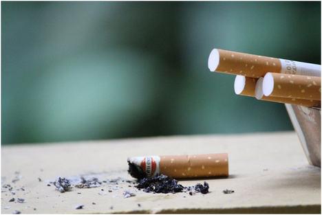 Cuánto gasta un fumador al año