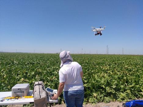 El dron, un aliado que ya es imprescindible en la investigación agronómica andaluza