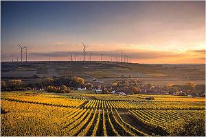 Economía circular y neutralidad climática