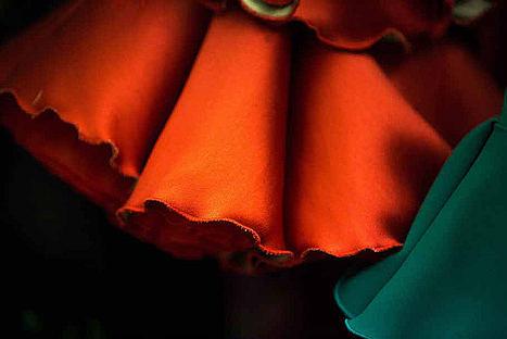 El 9 de enero, Lina celebra su 60 aniversario con un desfile en la Casa de Salinas de Sevilla.