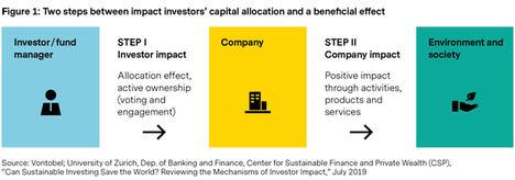 El efecto indirecto de la inversión de impacto