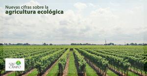 El informe sobre la Producción Ecológica 2018-2020, tema a debatir en Foro del Campo