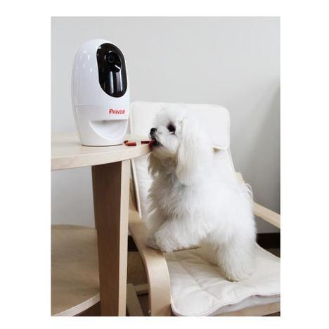 En 2018 aumentarán los espacios pet friendly y las mascotas consumirán más alimentos ecológicos