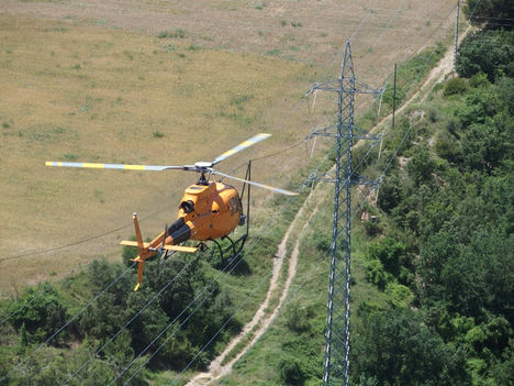 Endesa destina 71,8 millones a mantenimiento de redes y trabajos forestales en la campaña de verano