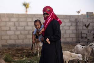Es necesario reforzar la resiliencia de agricultores y criadores de ganado en Yemen, en especial de las mujeres