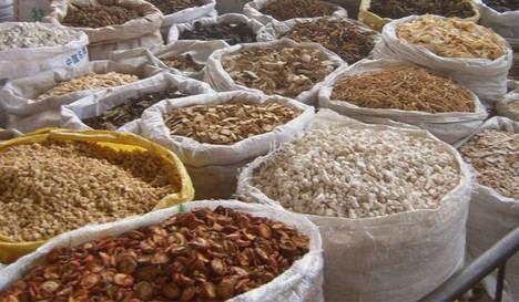 Euroinnova cede un espacio de su oferta formativa a la medicina tradicional china