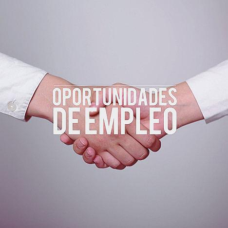 Euroinnova recomienda su formación para las 3.000 nuevas oportunidades de empleo en Orientación Laboral