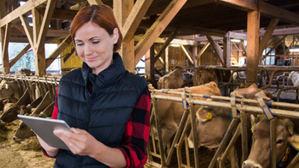 Eurona se refuerza en Irlanda y arranca su proyecto para conectar hasta 1.000 granjas bajo el programa nacional de banda ancha