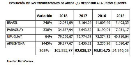 Unión de Uniones destaca que las importaciones de arroz de Mercosur a la UE aumentan un 200% en los últimos cuatro años