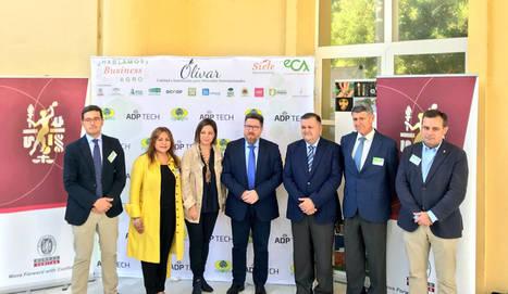 Sánchez Haro apunta a la digitalización como gran oportunidad para que el sector oleícola andaluz llegue más lejos