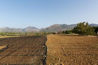 FPT Industrial y Slow Food apoyan comunidades de producción de alimentos sostenibles
