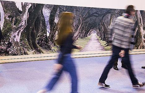 'Greenways Heritage', una oportunidad para las vías verdes y el turismo ferroviario