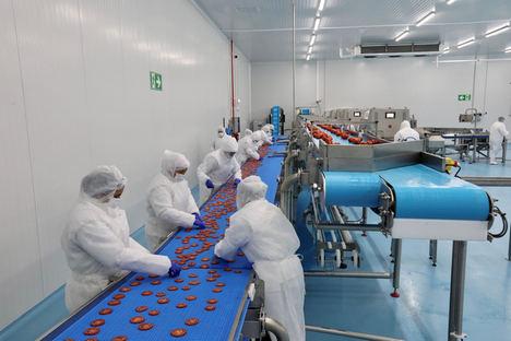 Se inaugura en Almería la primera planta de frutas y hortalizas congeladas de Europa