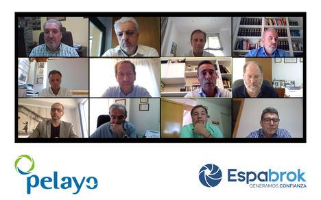 Francisco Lara, Director General de Pelayo Mutua de Seguros, compartió videoconferencia con toda la Red de Espabrok