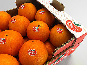 Gomo y Biogomo nacen para promover el sabor de los cítricos del Algarve