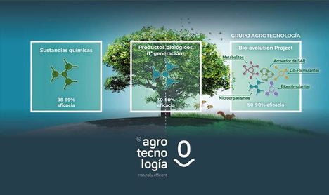 Grupo Agrotecnología afianza su internacionalización reforzando su estrategia