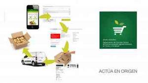 Grupo Operativo para la digitalización de circuitos cortos de comercialización de frutas y hortalizas