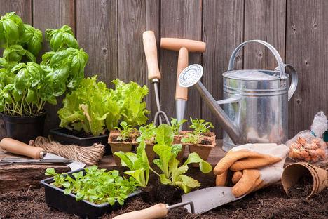 Fundación Triodos amplía el alcance de proyectos de crowdfunding al ámbito de la agricultura social