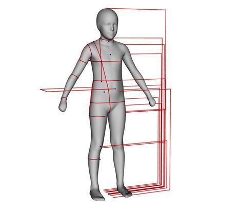 IBV coordina un estudio para medir los datos antropométricos y de fuerza de los niños europeos