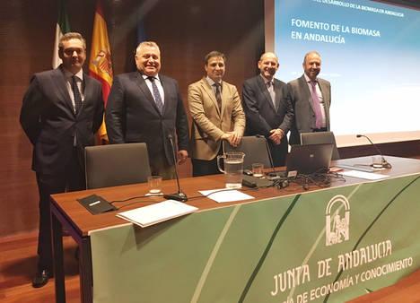El sector renovable andaluz defiende el potencial de la biomasa en Andalucía